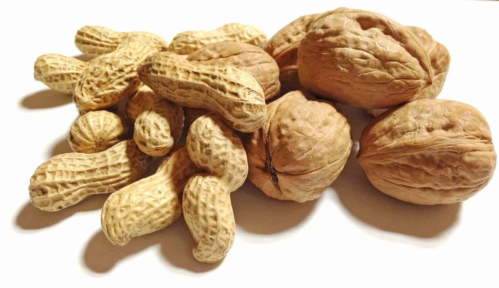 peanuts and walnuts are allowed on the low-FODMAP eating plan