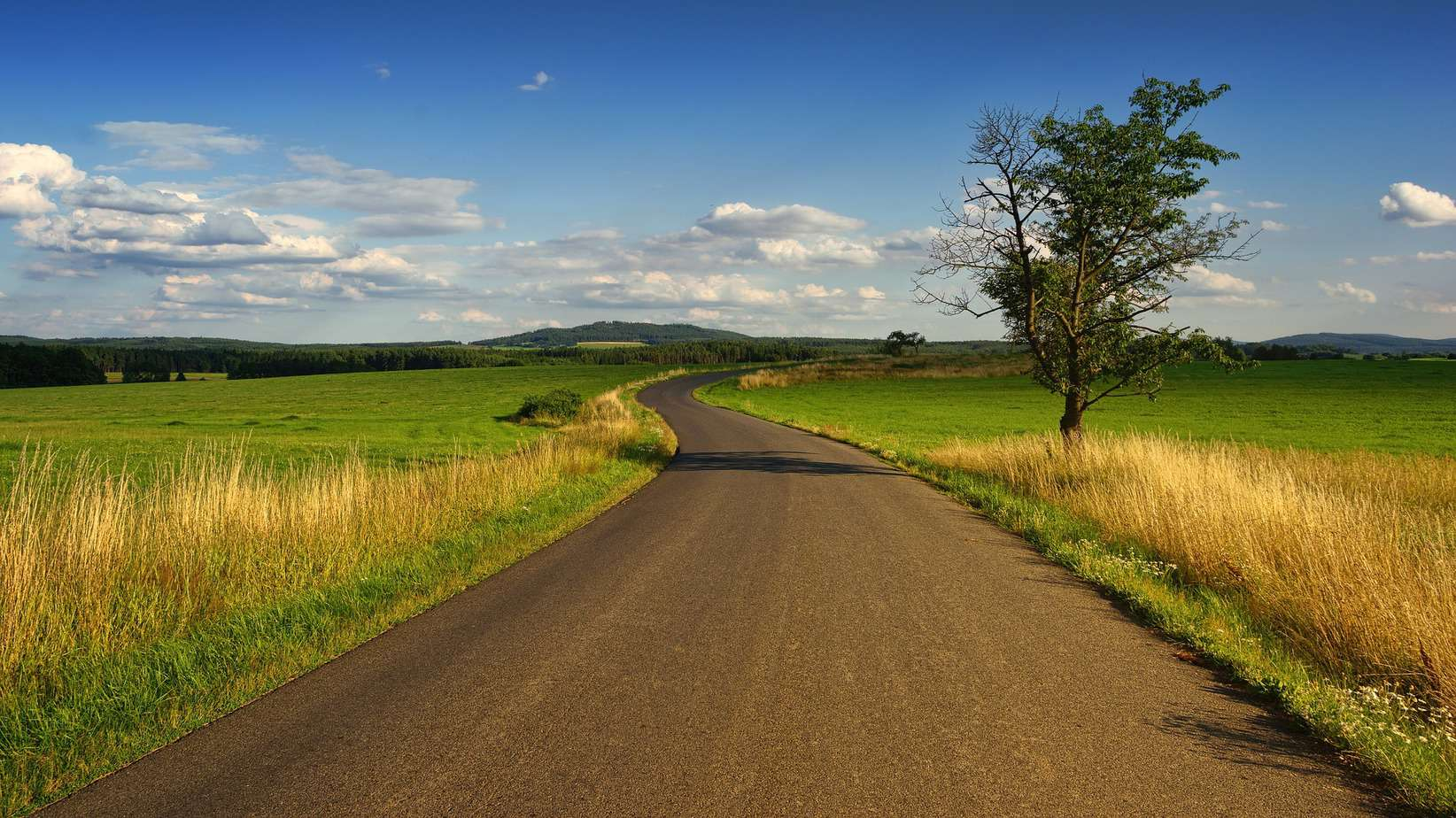 Sunny day, green fields, long and winding road