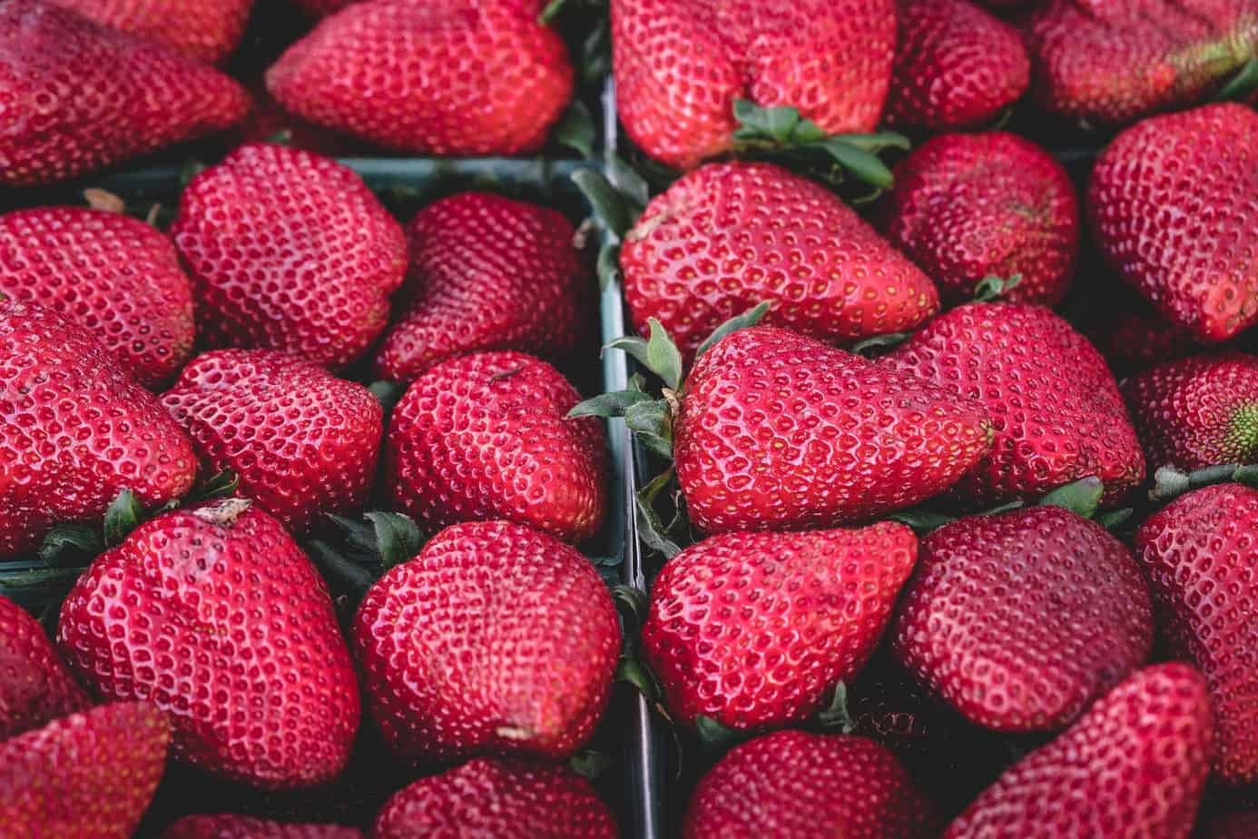 Fresh strawberries in boxes.